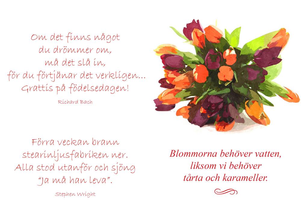 gratulationer citat Hjärtliga gratulationer på födelsedagen (Platina)   DANIEL SWORD gratulationer citat