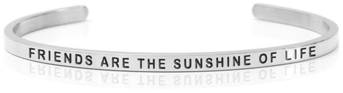 "FRIENDS ARE THE SUNSHINE OF LIFE Steel (Buy One Give One collection) ""Not for sale in the USA"""